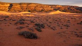 日落的珊瑚桃红色沙丘国家公园 免版税图库摄影