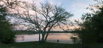 日落的秘密湖公园在Casselberry佛罗里达 免版税库存照片