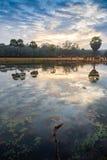 日落的精采颜色在布法罗湖的northwoods的 库存图片