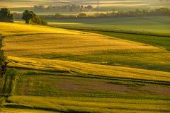 日落的绵延山 农村的横向 绿色领域和农田,新充满活力的颜色 免版税库存图片