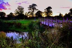 日落的美丽的草甸 库存图片