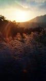 日落的美好的片刻在阳明山国家公园国家公园的峰顶的一汇集在台湾 免版税图库摄影