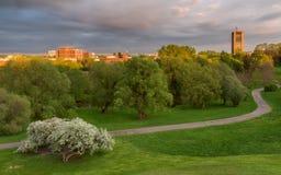 日落的都市公园在春天 免版税图库摄影