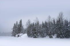 日落的雪 免版税库存图片