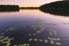 日落的Wilderness湖 库存照片