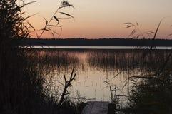 日落秋天风景与生长在湖中水的人行桥和芦苇的  免版税库存图片