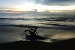 日落自然旅行美丽的沙子海滩海覆盖天轻的惊人的片刻 免版税库存照片