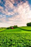 日落覆盖在一个农场在南约克县,宾夕法尼亚 库存照片