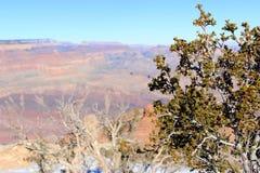 日落视图的大峡谷全景 免版税库存图片
