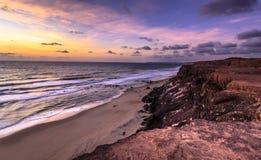 日落负子蟾, Tibau做南水道-北里约格朗德,巴西 免版税库存照片