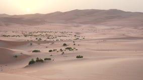 日落阿联酋股票英尺长度录影的美丽的磨擦Al Khali沙漠 股票录像