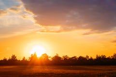日落,在农村领域草甸的日出 明亮的剧烈的天空 免版税库存图片