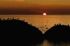 日落 对太阳的问候 库存照片