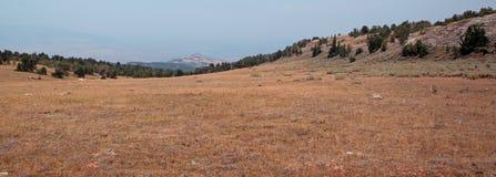 日落/黄昏在忽略比格霍恩全国度假区在普莱尔山的茶杯峡谷在蒙大拿 免版税库存图片
