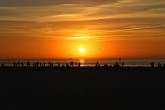 日落- Clearwater海滩的人们 库存照片