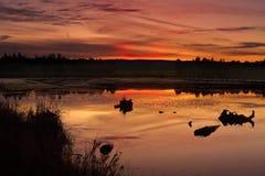 日落Duralia湖Penrith 库存照片