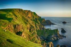 日落Hermaness自然保护安斯特岛(舍德兰群岛) 免版税库存图片