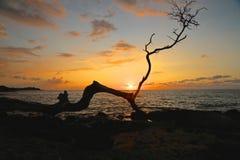 日落Waikoloa海滩夏威夷 库存图片