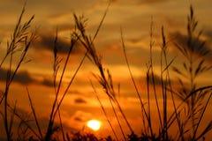 日落westren亚齐,印度尼西亚 库存照片