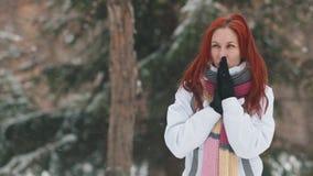日霜1月天然公园多雪的结构树冬天 一名快乐的妇女以做准备的明亮的红色头发尝试在冷天 股票视频