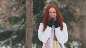 日霜1月天然公园多雪的结构树冬天 一名快乐的妇女以给她的手加热的明亮的红色头发尝试 股票视频