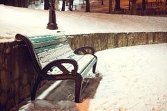 日霜1月天然公园多雪的结构树冬天 用在的雪盖的绿色长凳 免版税库存图片