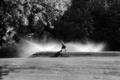 日高尔夫球 免版税库存图片