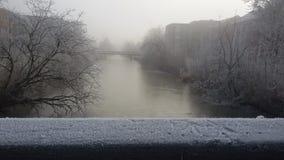 日冻结的地产休息雪结构树冬天 库存图片