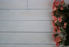 日s华伦泰 在白色木背景的美丽的玫瑰 库存照片