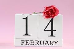 日s华伦泰 2月14日与康乃馨花的 免版税库存照片
