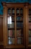 旧书在一个老图书馆里 库存照片