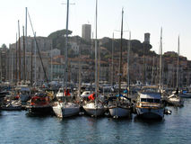 旧港口在戛纳 免版税库存图片
