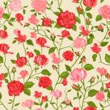 破旧的别致玫瑰色背景 免版税库存图片