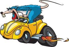 旧车改装的高速马力汽车鼠 免版税库存照片