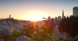 旧金山全景日出地平线视图 股票录像