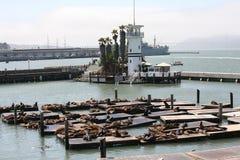 旧金山湾 库存照片