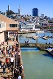 旧金山码头39小游艇船坞和地平线 库存照片