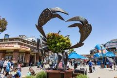 旧金山,加利福尼亚- 7月18 :码头39渔夫` s码头a 库存图片
