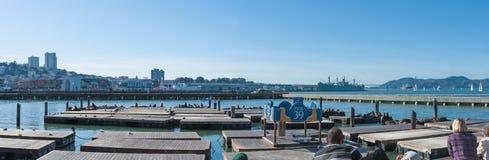 旧金山` s码头39海狮Exihibition 库存图片