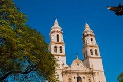 旧金山de坎比其,墨西哥 大教堂在蓝天背景的坎比其 免版税库存照片