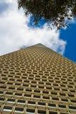 旧金山Transamerica金字塔 库存照片