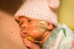 早产婴孩享用皮肤的女婴剥皮与爸爸 免版税库存照片