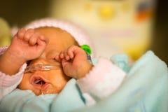 早产婴孩摩擦她的在nicu的女婴眼睛 免版税图库摄影
