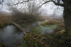 早冬天森林风景和小河 免版税库存照片