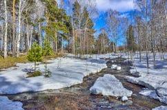 早春天风景在有熔化的雪和溪的森林里 库存照片