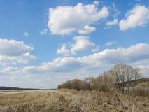 早春天风景在蓝天下 库存照片