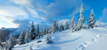 早晨冬天山风景(喀尔巴阡山脉,乌克兰)。 免版税图库摄影