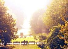 早晨在公园 库存照片
