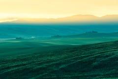 早晨在农田的雾视图在托斯卡纳,意大利 图库摄影