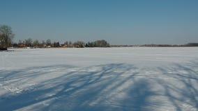 早晨在冬天冷淡的湖的树阴影从寄生虫下雪 股票视频